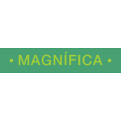 Mexico Labels- Magnifica (Magnific referring to a girl)