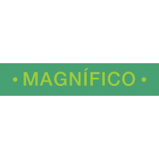 Mexico Labels- Magnifico (Magnific referring to a boy)