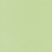 Mexico Solid Paper- Light Green