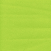 Mexico Solid Paper- Green