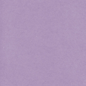 Mexico Solid Paper- Purple