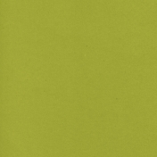 Mexico Solid Paper- Green Olive