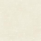Gingham 01- White