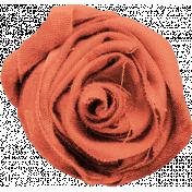 Fabric Rosette 01- Tea Cup