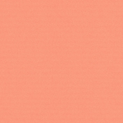 City Bicycle Solid Paper- Coral
