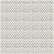 Argyle 34- Glitter Transparency- Silver