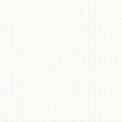 Vellum Paper- Polka Dots