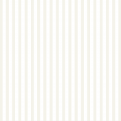 Vellum Paper- Stripes