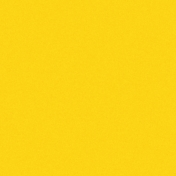 World Cup Yellow Paper