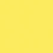 Sweet Summer- Textured Paper- Yellow