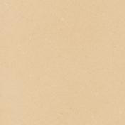 Cruising Solid Paper- Tan