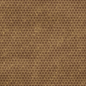 Geometric 13- Brown