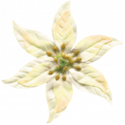 Arabia Flower- White 1