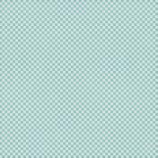 Checkered 06- Aqua & White