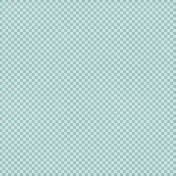 Checkered 06- Aqua & White