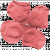 Bolivia Flower- Pink