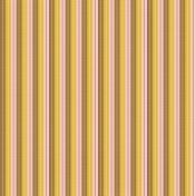 Bolivia Stripes & Lines Paper