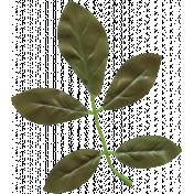 Bolivia Mini Kit- Silk Leaves