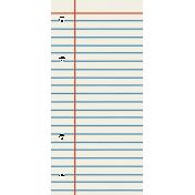 Bolivia Mini Kit- Lined Paper Tag