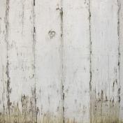 Veggie Patch- Wood Texture Paper