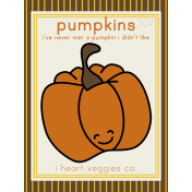 The Veggie Patch Cards Kit- Pumpkins