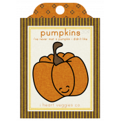 The Veggie Patch Seed Packets- Pumpkin