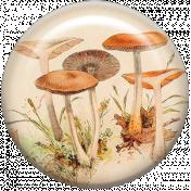 Autumn Art- Mushroom Brad