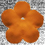 Veggie Patch Flower- Orange