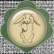 Bunny Brad