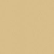 Cardboard- Tan 01