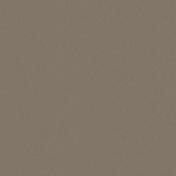 Cardboard- Brown