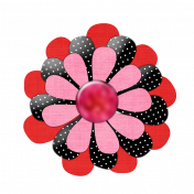 Pink Red Black Flower