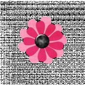 Pink Pink Flower 2