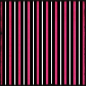 Black Pink Stripes