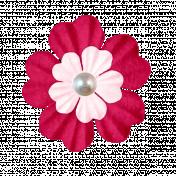 Pink Pearl Flower