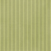 Stripes 57 Paper- Green