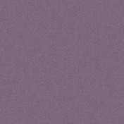 Captured Solid Paper- Purple