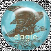 Animal Brad- Eagle