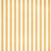 At the Zoo Striped Paper - Cream & Orange