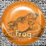 Animal Brad- Frog
