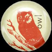 Animal Brad- Owl