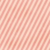 Stripes 38 Paper- Pink