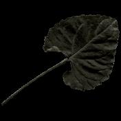 Arrgh!- Black Leaf 2