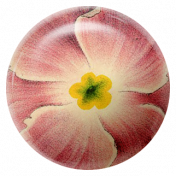 August Garden Party- Pink Flower Brad
