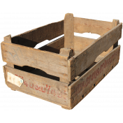 The Veggie Patch- Wooden Crate