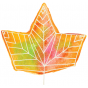 Autumn Art- Drawn Maple Leaf