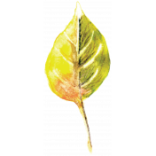 Autumn Art- Watercolour Leaf 3