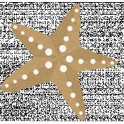 Sand And Beach- Starfish 2