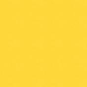Sand & Beach- Yellow- Paper