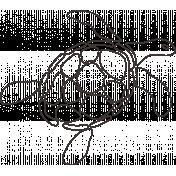Sand & Beach- Turtle- Nautical Stamp